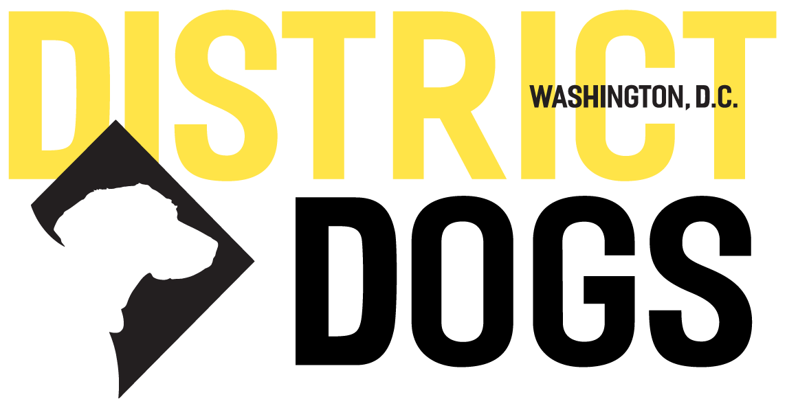 District Dog logo.png