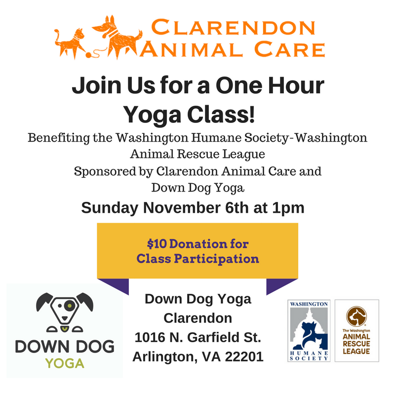 Join Us for a one Hour Yoga class (4) (3).png