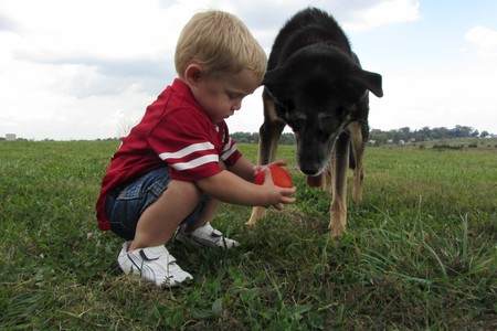 Photo Contest - Winning Photo - Connie McCabe (Brody and Bet