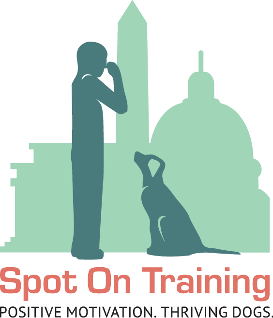 Spot On Training logo 3.3.17